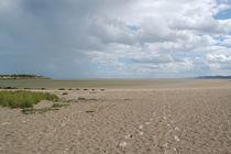 Strand von Dublin by julita