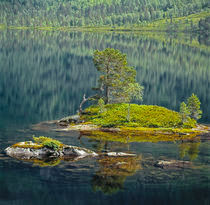 ISLE OF SILENCE by Rainer Elpel