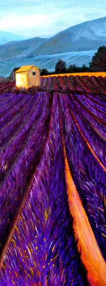 Lavendelfeld by Thomas Spyra