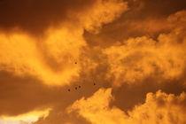 Wundervolle Wolkengebilde von Detlef Otte