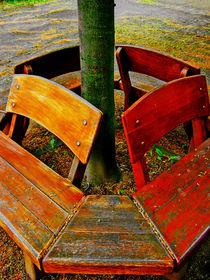 Herbst by Andreas Meer