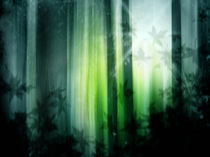 Dark forest wallpaper. by Bernd Vagt