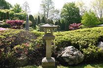 Japanischer Garten by Victoria Garden
