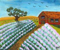 Lavendelfeld von Mischa Kessler