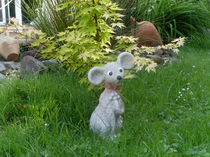 Eine kleine Maus im Garten by monika beging