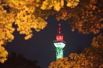 Der Berliner Funkturm by oktopus4