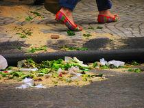 Zapatos Bellos by Siete Gatos Locos