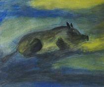 Schlafendes Wildschwein von kattobello