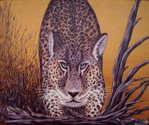 Leopard by Horst Rehmann