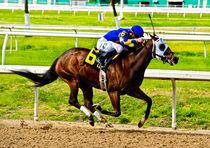 Jockey by gibleho