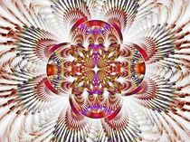 Rossettenblume I by fraktalise