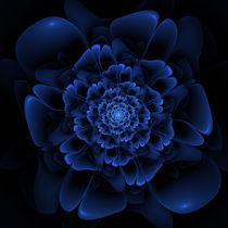 Blaue Blüte by fraktalise