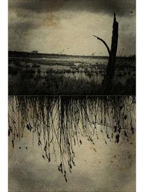 melancholia. von sommerpfuetze