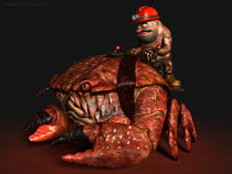 Crab Rider by Tomás Cejudo Morin