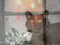Warten auf Weihnachten by Cornelia Greinke