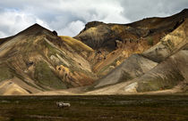 Farben der Natur by Michael Mayr