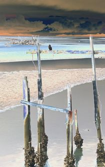 birdie at low tide von Susanne Brutscher