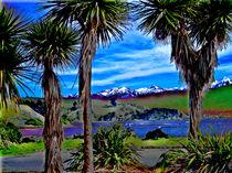 Kaikoura, NZ by Susanne Brutscher