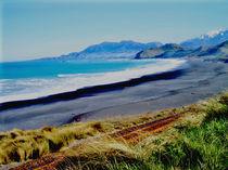 Kaikoura Coast, NZ by Susanne Brutscher