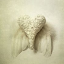 Angel Wings by Priska Wettstein
