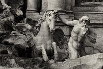 Fontana di Trevi  von Anja Abel
