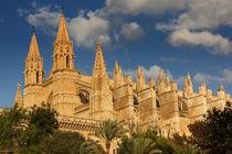 Palmas Kathedrale by Anja Abel