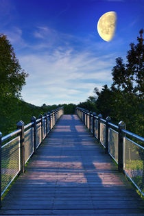 Mondbrücke (LIMITIERTE AUFLAGE 100) by leonardofranko