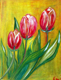Tulpen by elvi