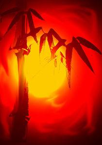 Roter Bambus von Stefan Grajek