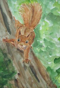 Eichhörnchen von Cornelia Kalfuß