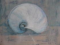 Muscheln 1 by Benedicta Aubele
