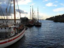 55 Seemeilen bis Cuxhaven von Peter Norden