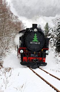 Mit Dampf durch den Winterwald
