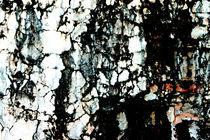 Maya Stones by Robert Schulz