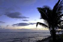 Sonnenaufgang am Golf von Mexico von Robert Schulz