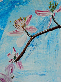 Kirschblüte by Elmo Hopp