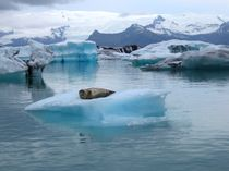 Gletscherlagune Jökulsarlon in Island von Marita Zacharias