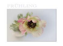 Frühling PK by Brigitte Jach