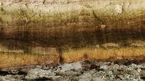 Baumlandschaft 2 by juergenrose