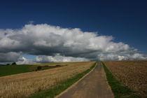 Feldweg im Hunsrück by rheo