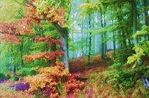 Märchenwald by rheo