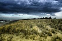 Dramatic Dune von fotodehro