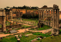 Forum Romanum in Italien von magdeburgerin
