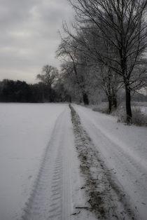 Wintertraum II von martinbs