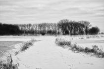 Wintertraum VII von martinbs