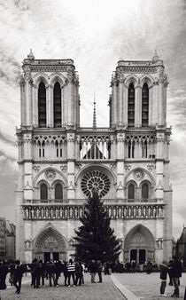 Kathedrale Notre Dame, Paris by René Aigner