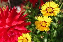 Blumengarten by loveangelmusic