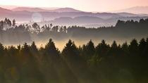 Summermorning by waidlafoto