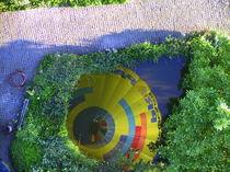 Ballon im Teich von Elmar Vallot