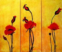 Mohnblüten von Barbara Straessle